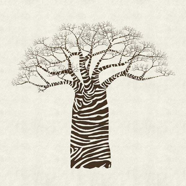 600x600 13 Best Baobab Trees Images On Baobab Tree, Africa