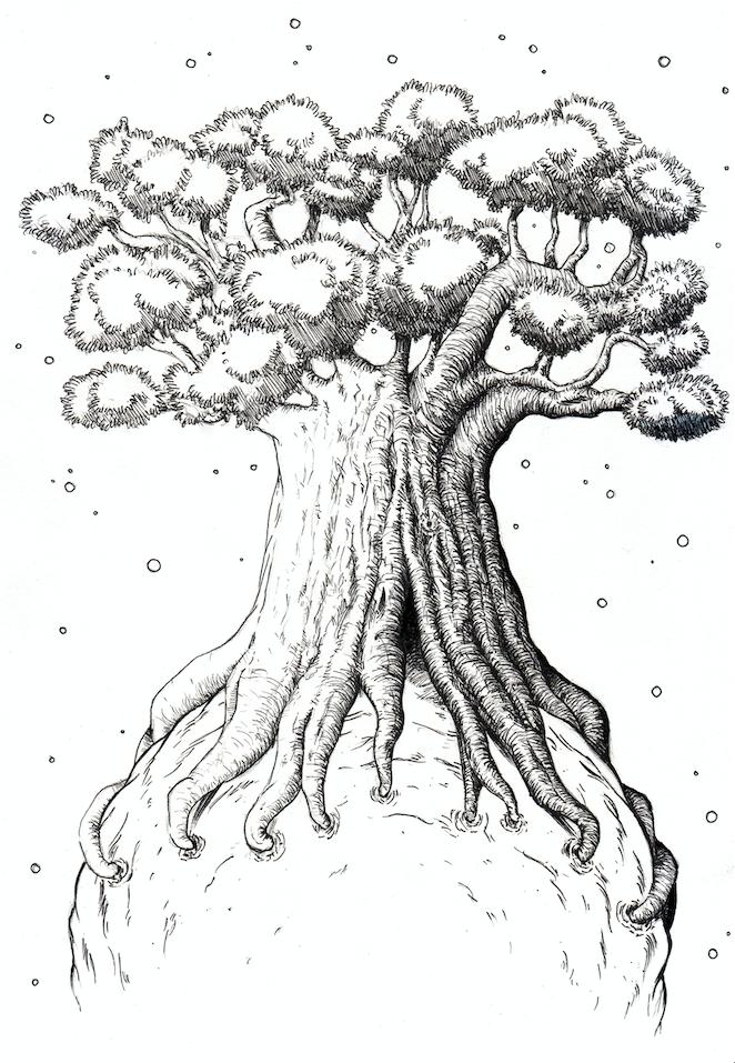 662x957 Baobab Domestika