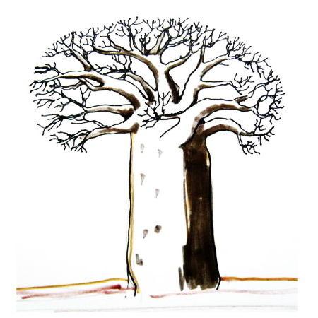 450x450 How To Draw A Baobab Tree