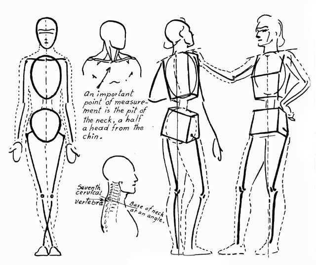 640x538 Learn To Draw Human Anatomy Images