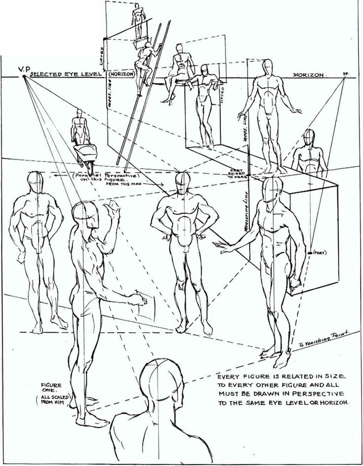736x944 Collection Of Drawing Human Figure In Perspective High