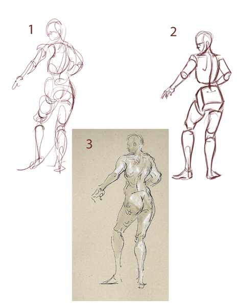 Basic Figure Drawing Tutorial at GetDrawings com | Free for