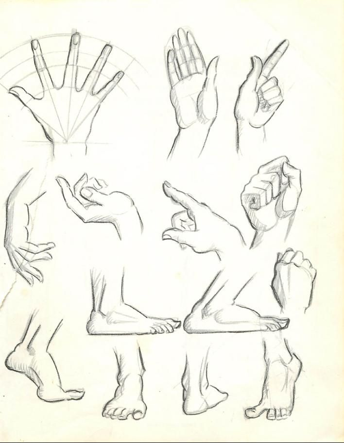708x913 How To Draw The Human Figure Drawing Body, Head, Facial Features