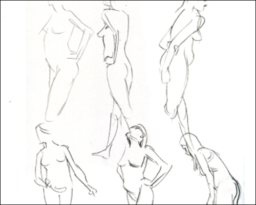 500x401 Gallery Free Human Figure Drawing Model,