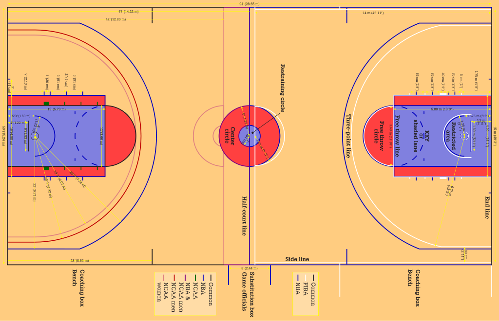 1024x660 Sports Science Vs Brain Science Of Basketball Where's The Shot