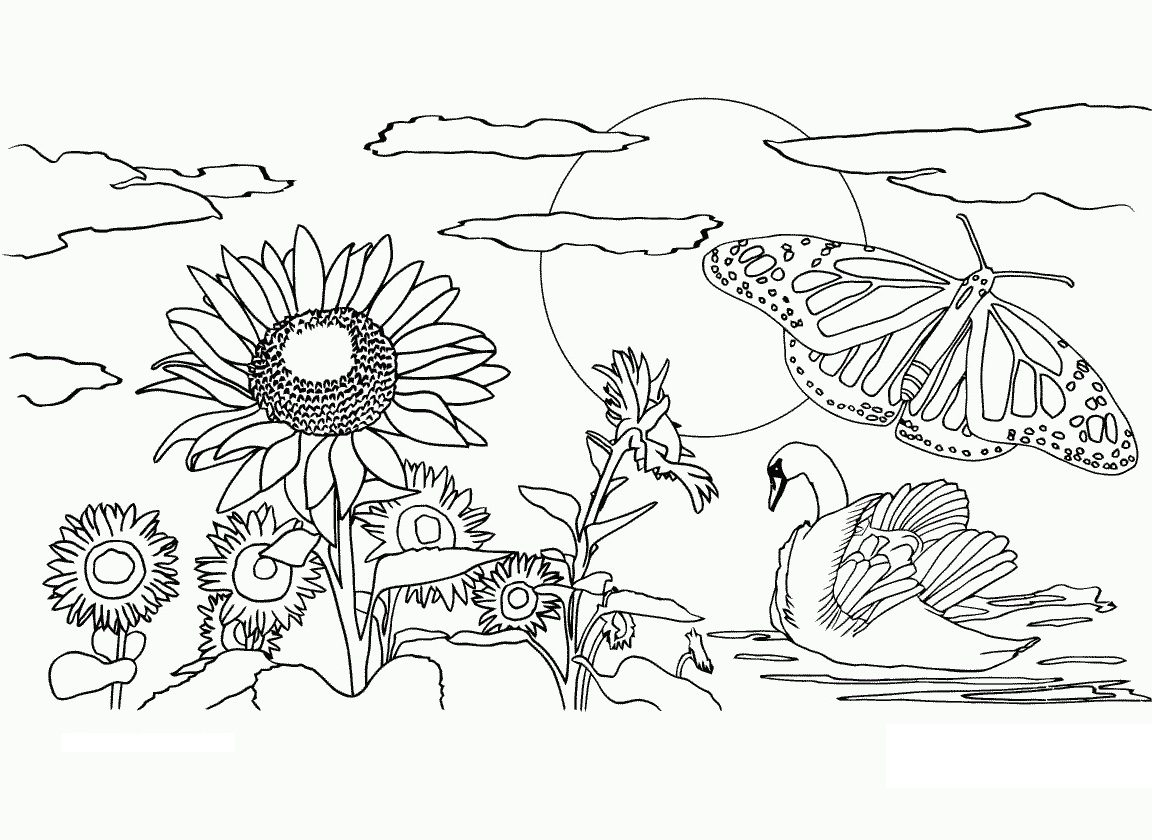 1152x840 Free Printable Nature Coloring Pages For Kids Beautiful Book