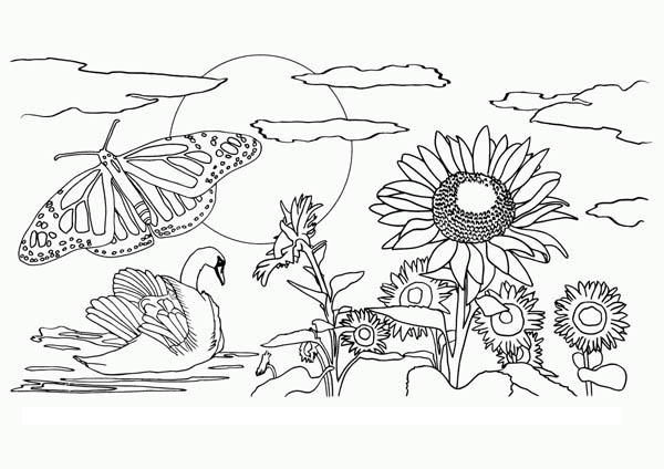 600x424 Beautiful Nature Coloring Pages Beautiful View Of Nature Coloring