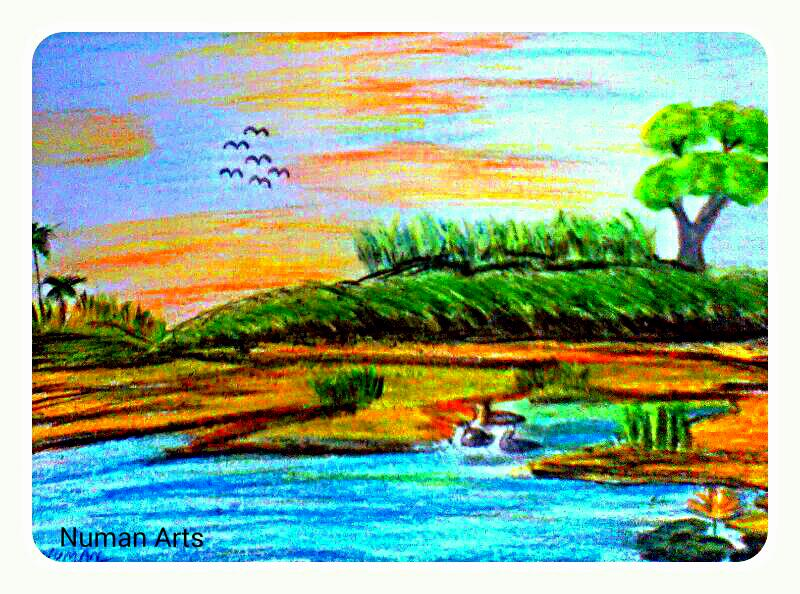 800x594 Numan Arts Amazing Nature With Oil Pastels