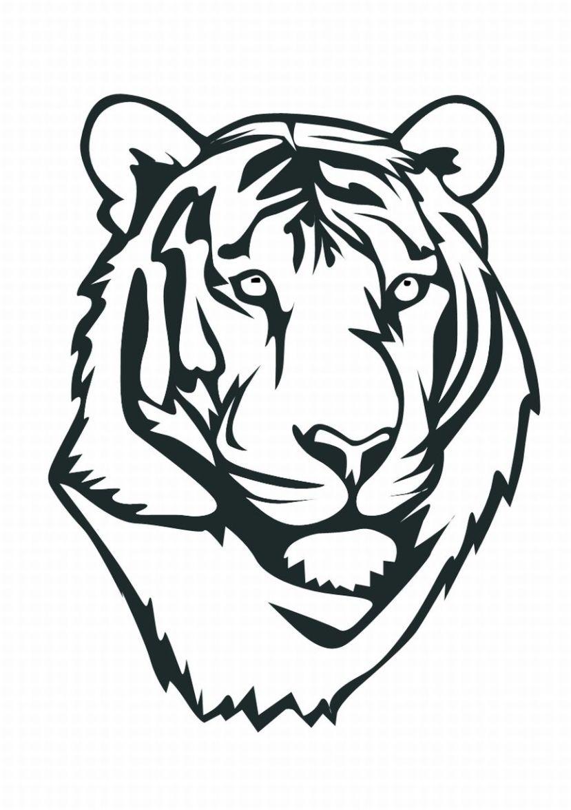 829x1176 Sketch Of Bengali Tiger Face Sketch Of Bengali Tiger Face