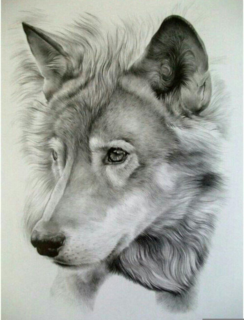 782x1024 Best Drawings Ever In The World Photos Best Drawing In The World