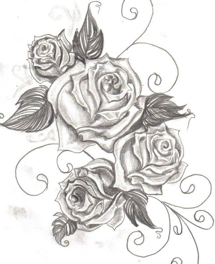 Black And Grey Rose Drawing