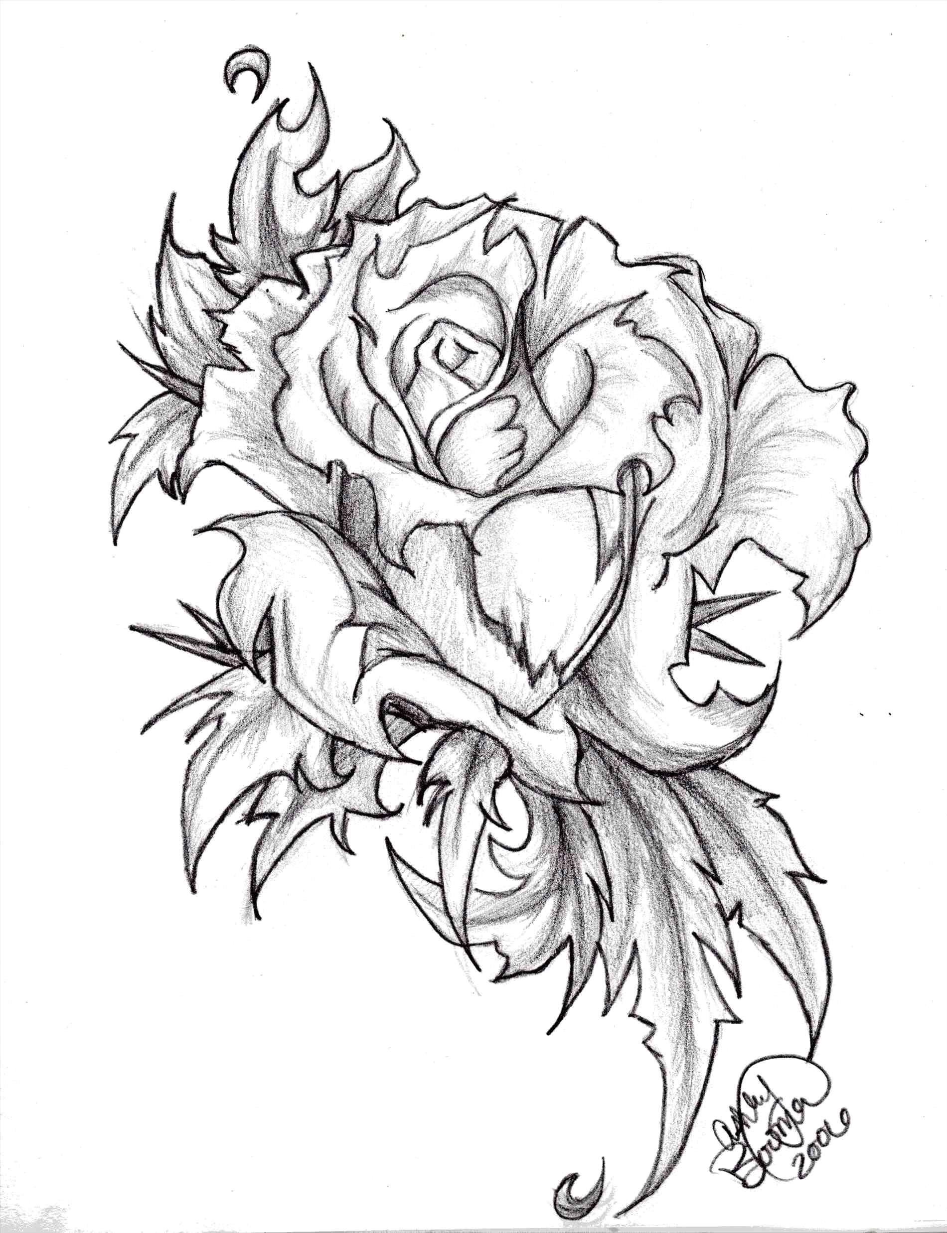 1900x2475 Easy Art Sketches Of Flowers Awesome Rose Flower Black And White