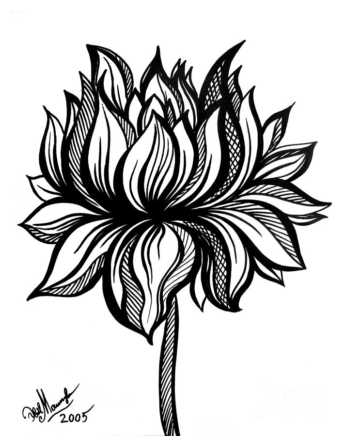 712x900 Lotus Flower. Black White Drawing Drawing By Sofia Metal Queen