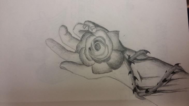 730x411 Rose Drawings , Art Ideas Design Trends