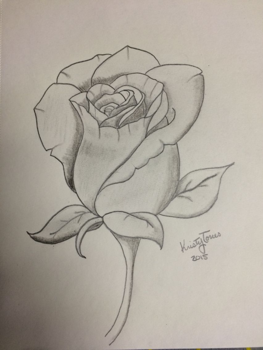 852x1136 Rose Drawing Things I'Ve Made