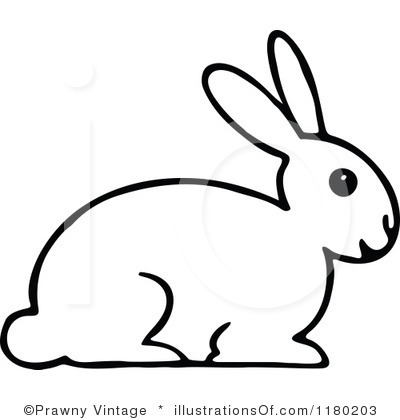 Black And White Bunny Drawing