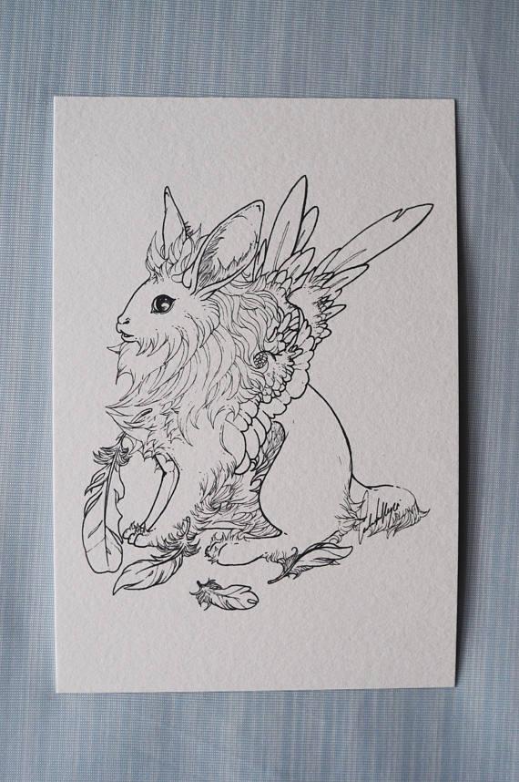 570x858 Lionhead Rabbit Postcard Fluffy Rabbit Drawing Rabbit