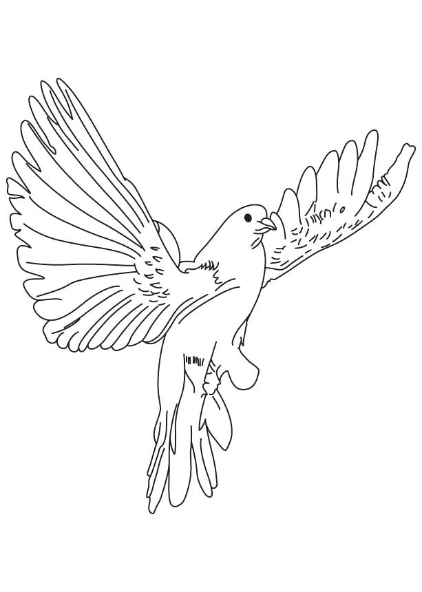 613x860 Christmas Dove Coloring Page