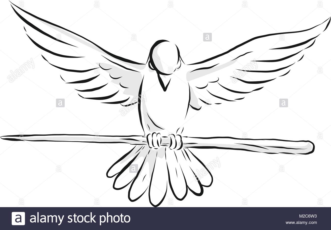 1300x905 Drawing Sketch Style Illustration Of A Soaring Dove Or Pigeon