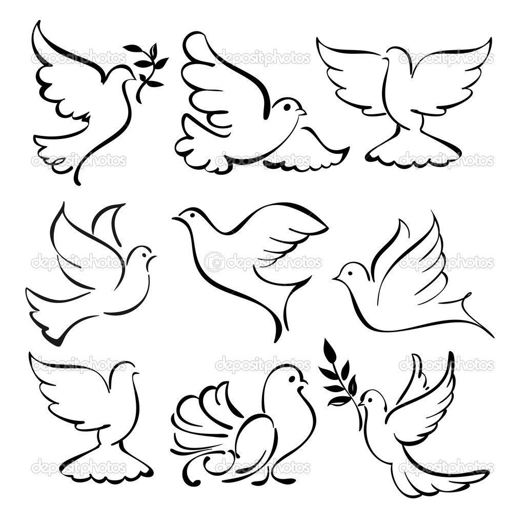 1024x1024 Dove Drawing Outline Kb Jpeg Dove Sketches Tattoos