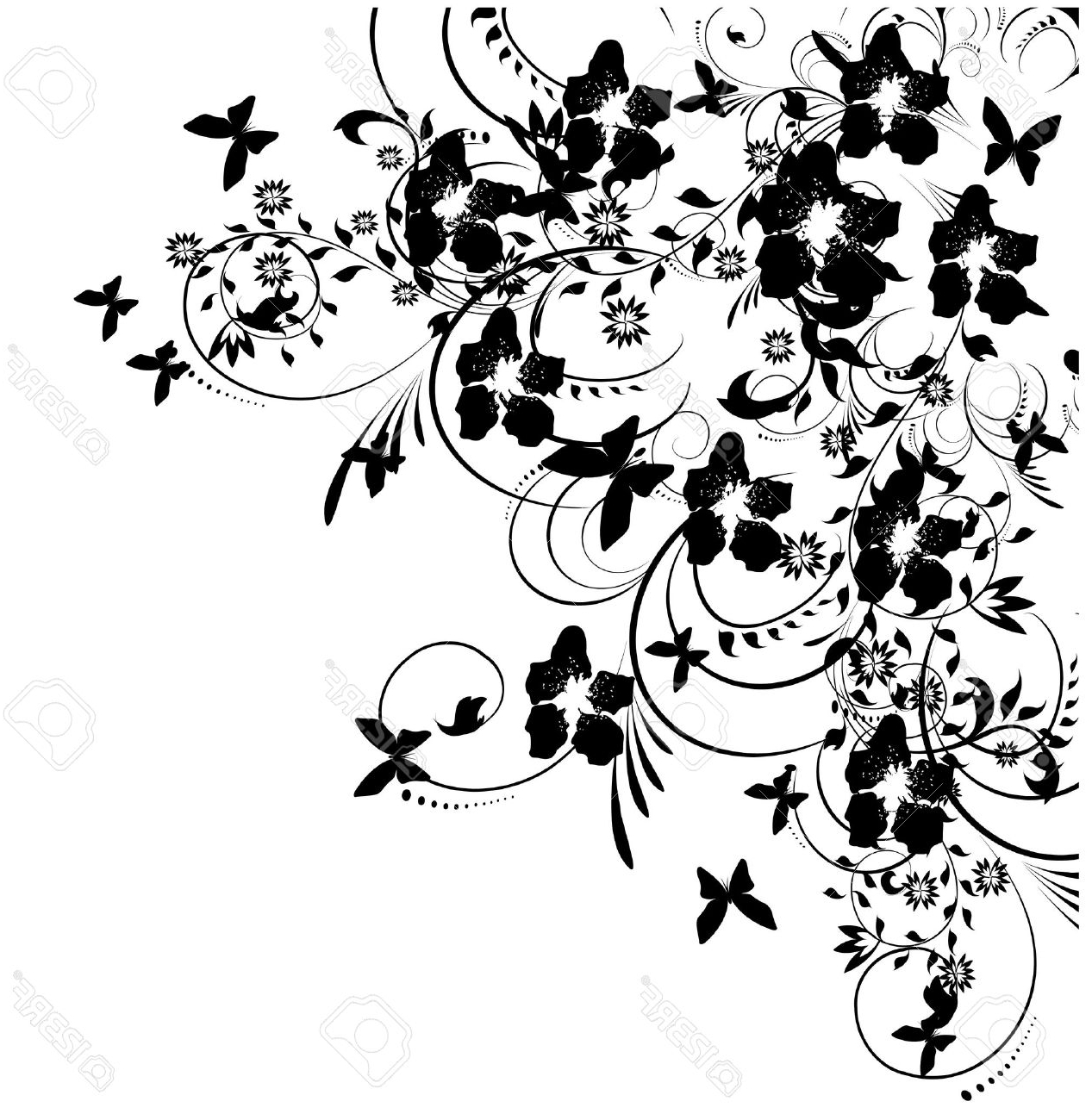1267x1300 Flower Butterfly Black And White Drawing How To Draw A Butterfly