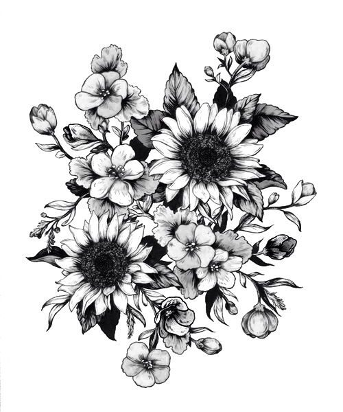 500x600 Flower Drawing Tumblr Photos Black And White Flowers Drawings