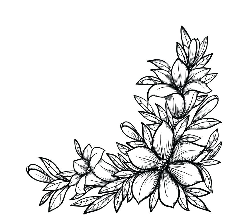 800x771 Black And White Flower Design Clip Art Black And White Flower
