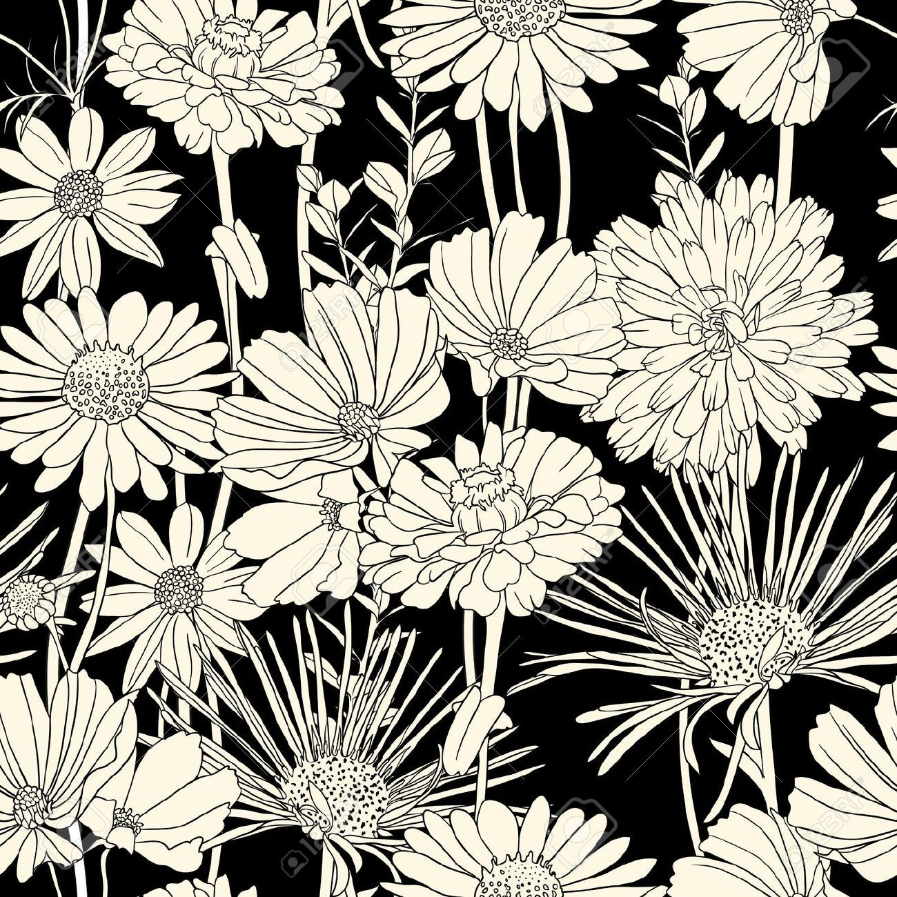 1300x1300 Photos Black White Flower Pattern,