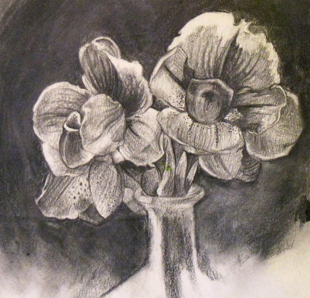 1024x984 Still Life Drawing Flowers Still Life Drawing Flowers Still Life