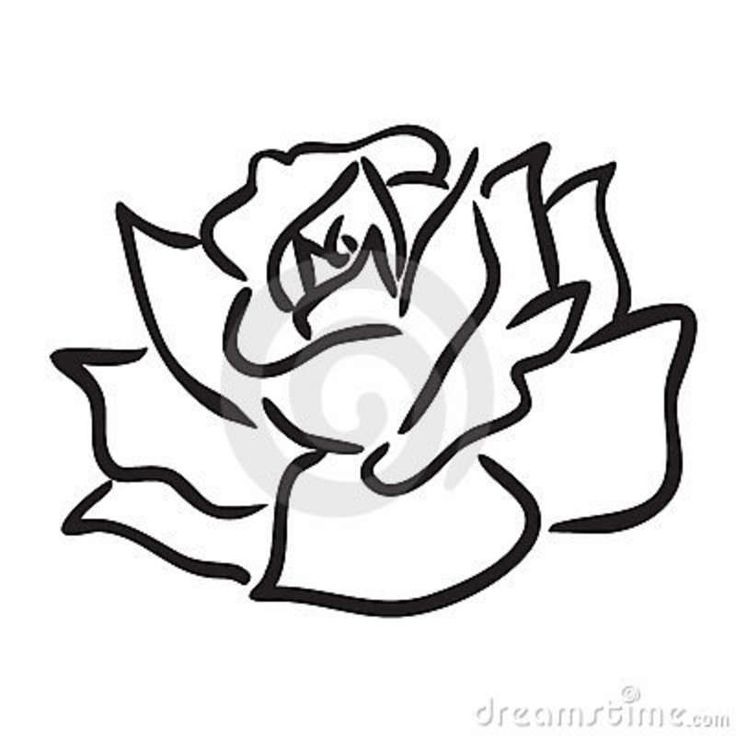 736x736 Rose Easy Drawing Drawn Rose Simple Pencil And In Color Drawn Rose