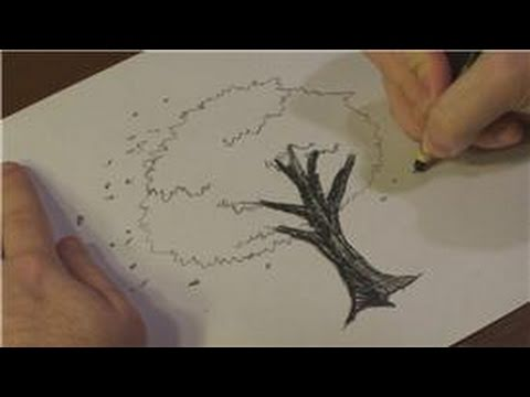 480x360 Nature Drawings How To Draw Cherry Blossoms In Black And White