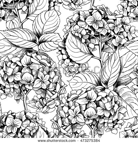 450x470 Collection Of Black And White Hydrangea Drawing High Quality