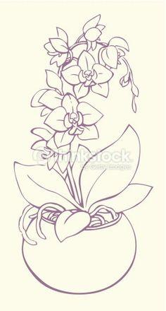 236x440 Hydrangea Drawing Liz Reed.co.uk Ltbgthydrangealtgt 3 Copy