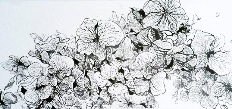 770x362 Saatchi Art Hydrangea 01 2014 Drawing By Jiaying Hu