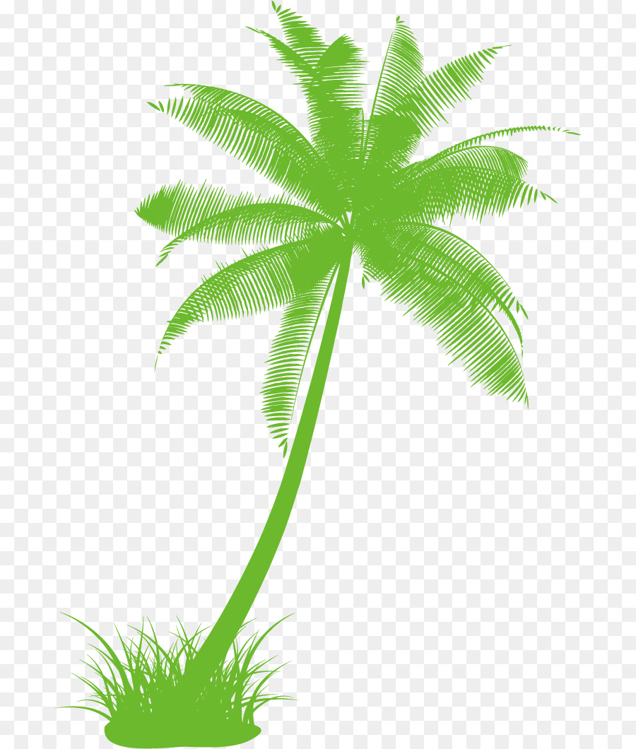 900x1060 Arecaceae Drawing Tree Black And White Clip Art