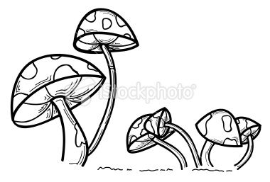 380x257 A Set Of Black And White Mushrooms. Mushrooms, Draw And Doodles