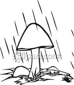 260x300 Black And White Mushroom Clipart