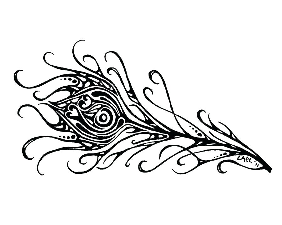 900x720 Feather Wallpaper Black And White Peacock Feather Drawing Black