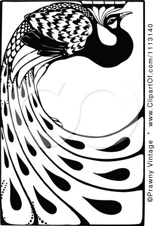 309x450 Image Detail For Clipart Vintage Black And White Peacock