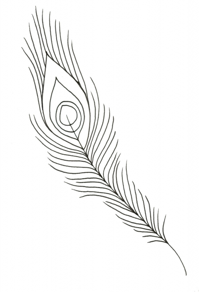 697x1024 Peacock Feather Drawing Black And White Peacock Feather Drawing