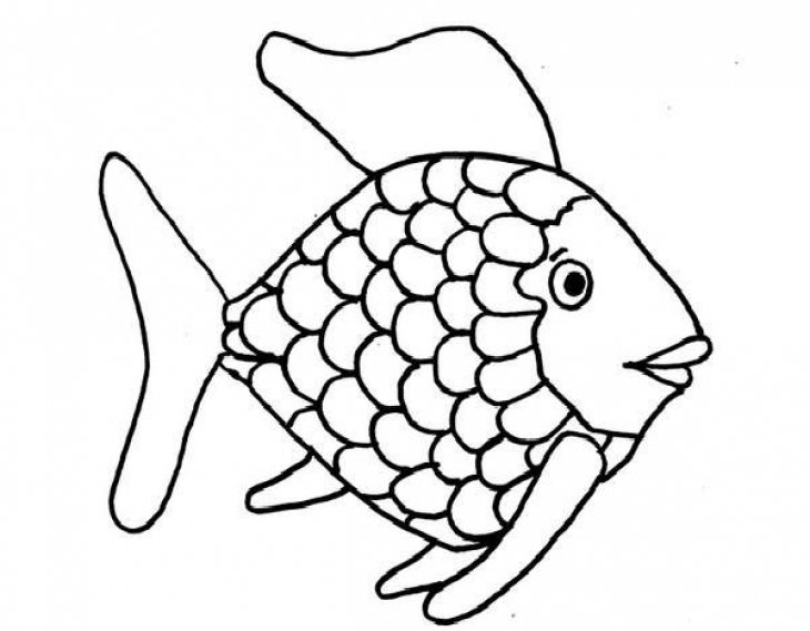 730x569 Kids Printable Rainbow Fish Coloring Page Free Fish Drawing Abc