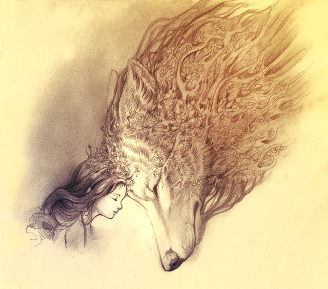 640x564 Wolfs Black And White Tumblr