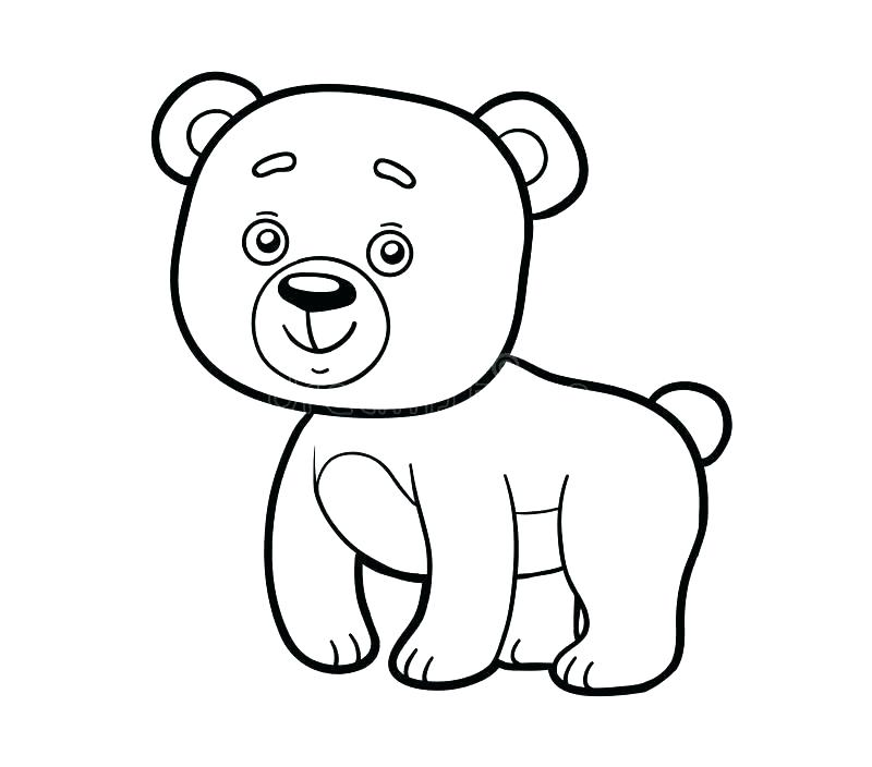 800x704 Black Bear Coloring Pages Bear Drawing Polar Bear Outline Drawing