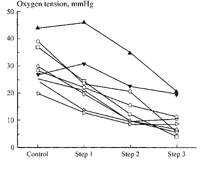 Elastic Tissue Diagram