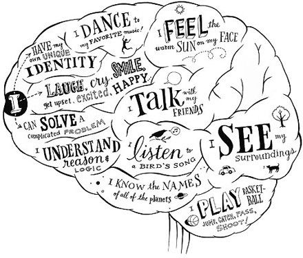 Brain Drawing With Labels