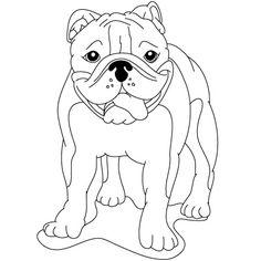 236x236 How To Draw An English Bulldog English Bulldog Obsession