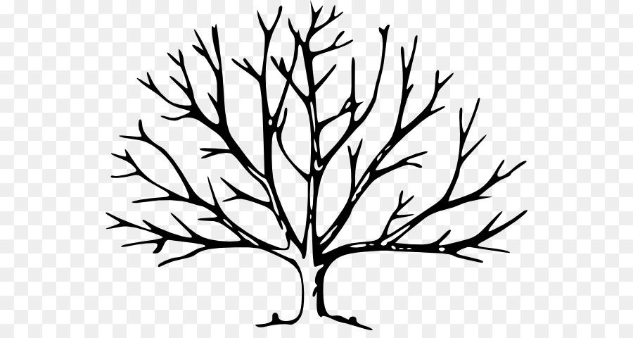 900x480 Tree Drawing Silhouette Clip Art