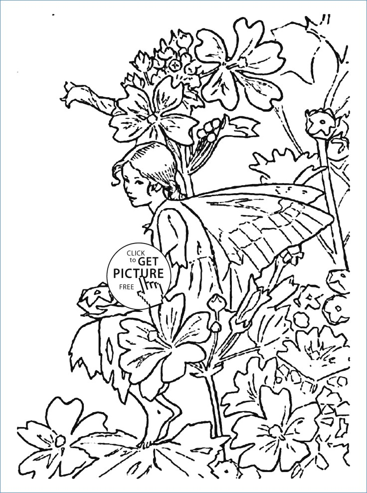 736x988 Letter B For Bugle Flower Fairy Coloring Page