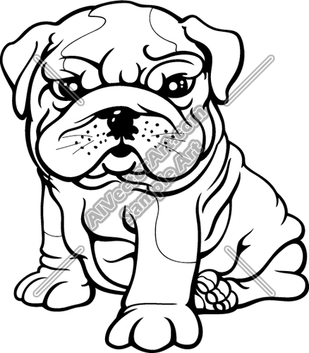 Bulldog Drawing Cute