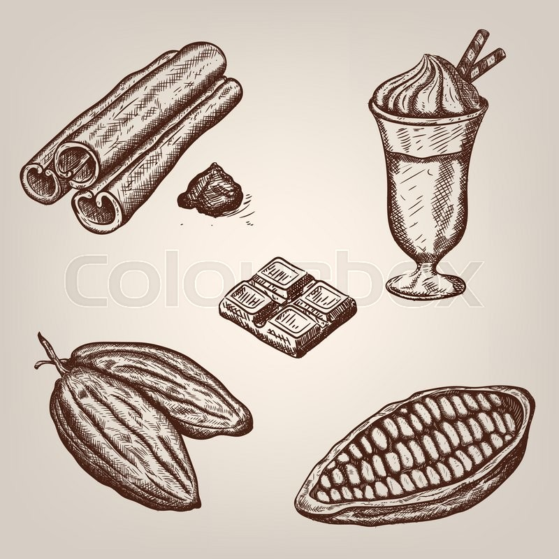 800x800 Hand Drawing Illustration Of Cacao Beans, Chocolate, Cup Of Hot